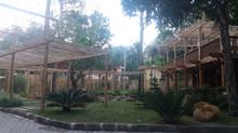 Trabalhos de bambu nas telinhas da globo