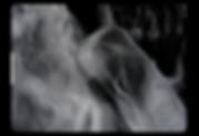 Capture d'écran 2019-06-07 à 15.10.12.pn