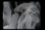 Capture d'écran 2019-06-07 à 15.10.01.pn