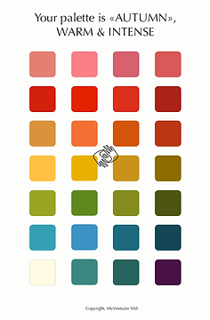 palette-type.png