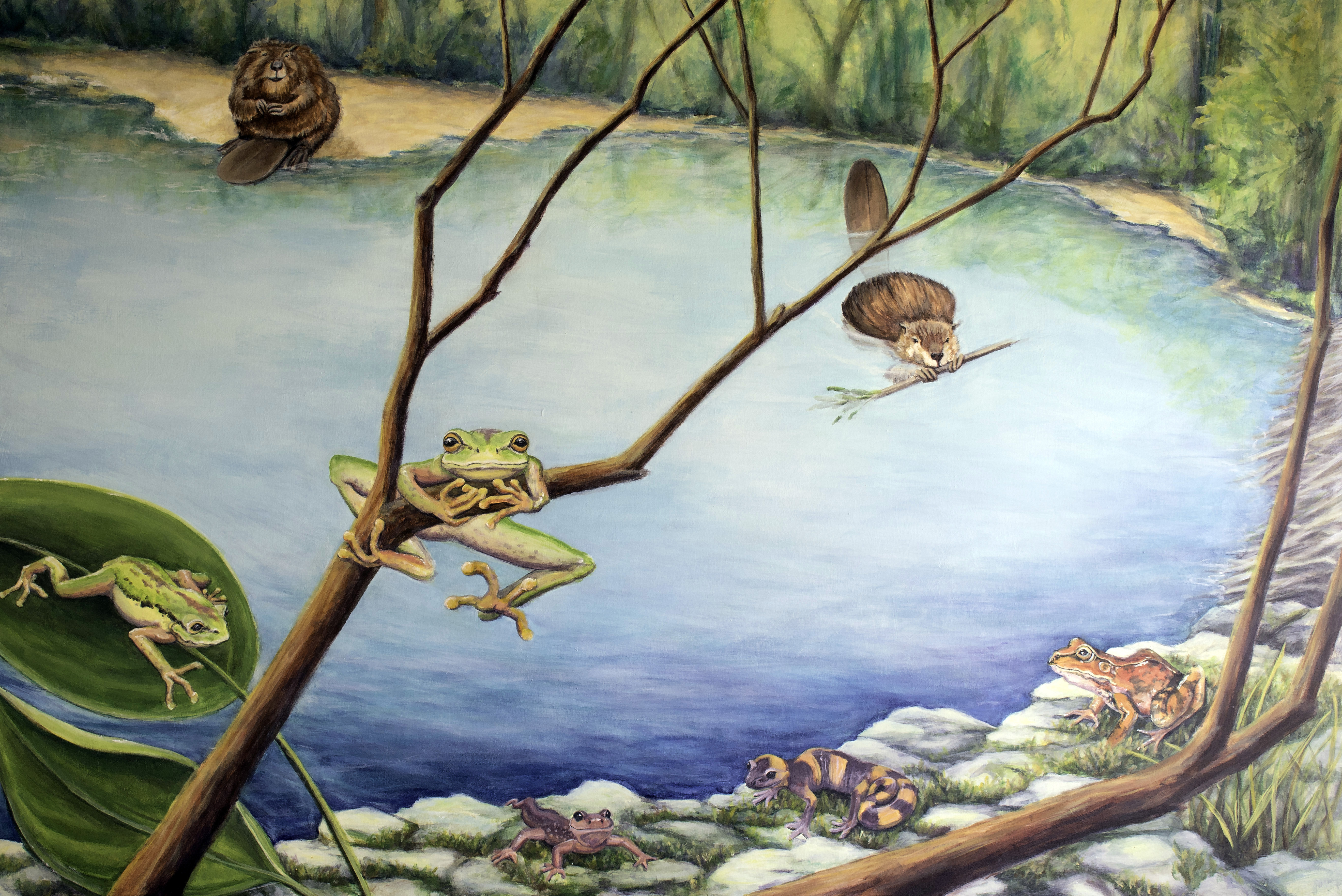 Stanford Pond Mural