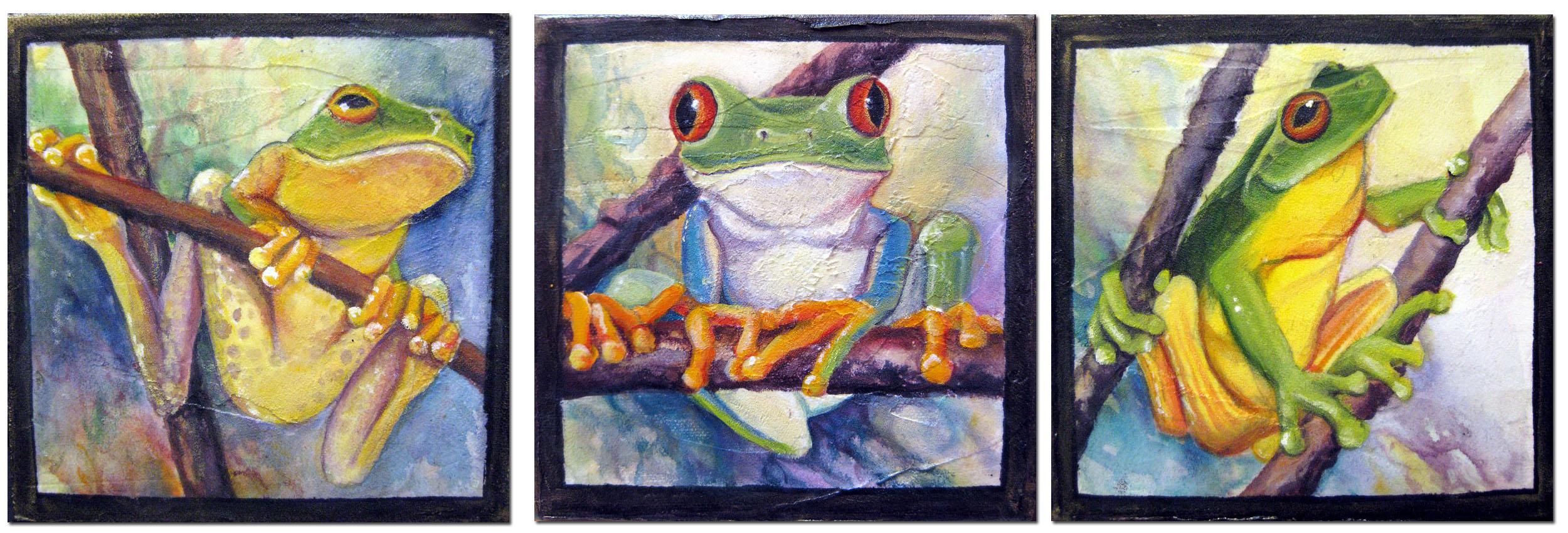 Three Tree Frogs