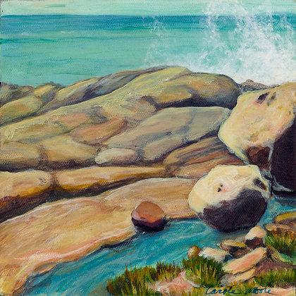 Sea Ranch rocky coast with waves crashing