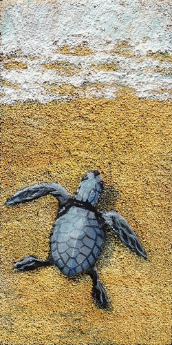 Turtle Trek III