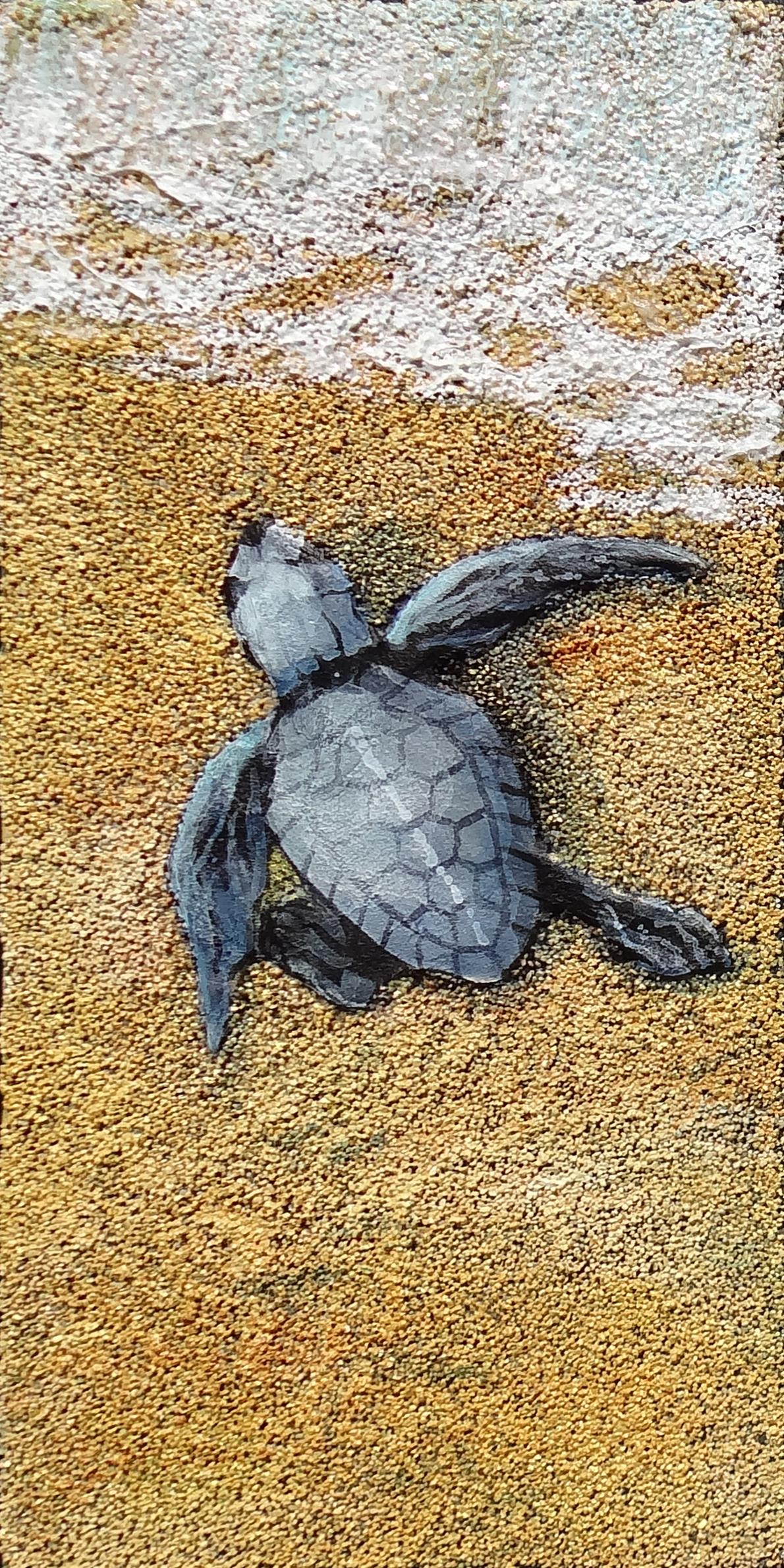 Turtle Trek I