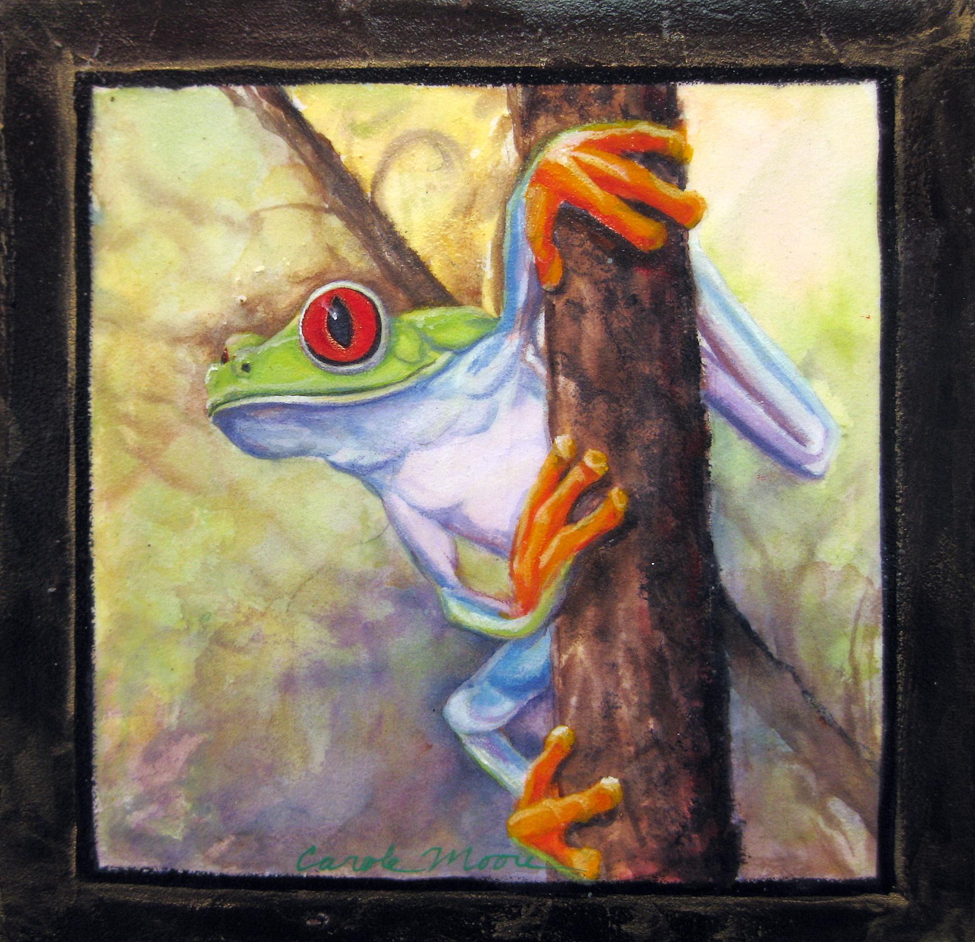 Tree Frog II