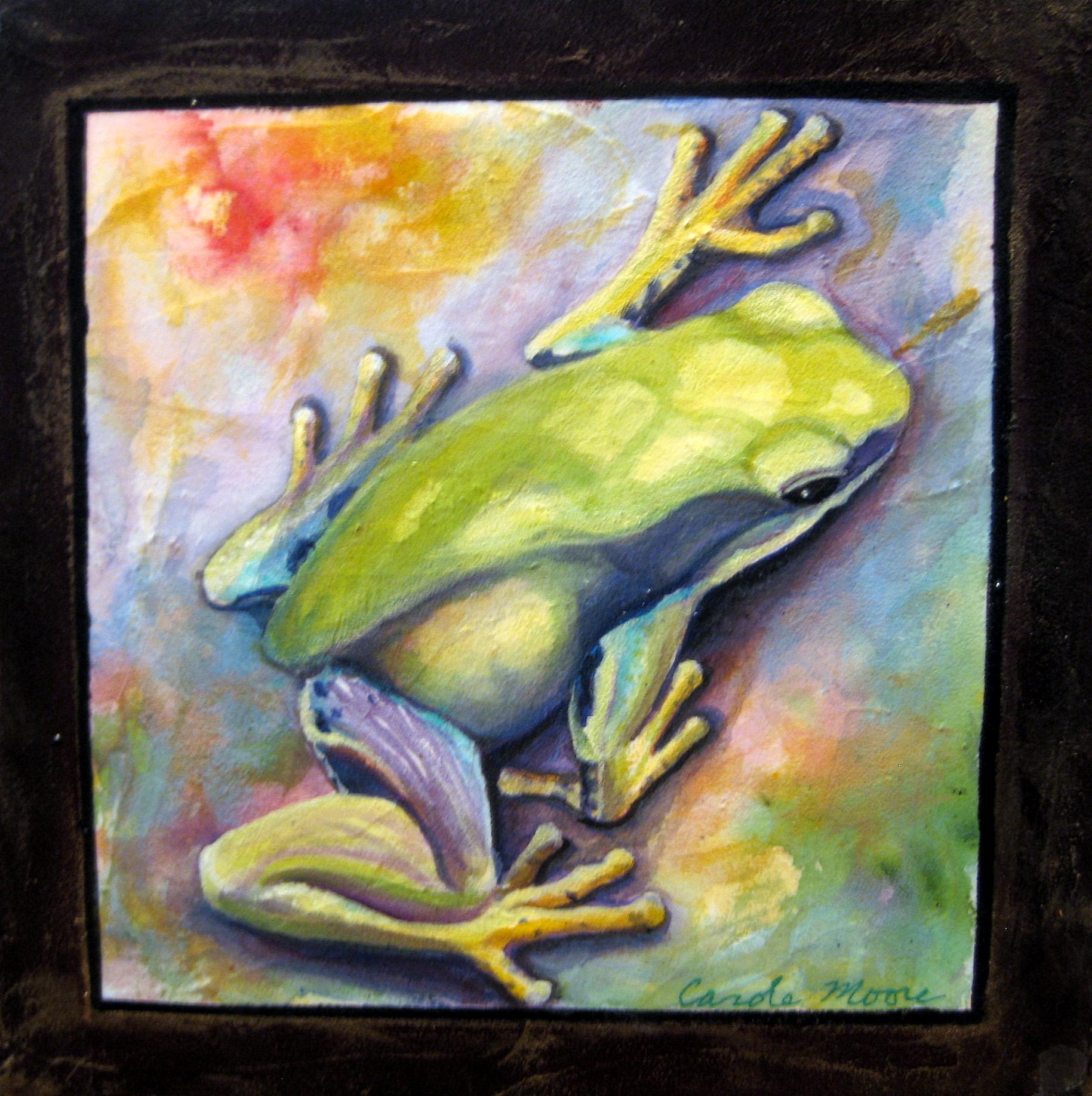 Tree Frog V