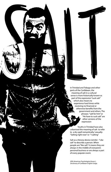 "Cultural Meaning of ""Salt"" poster"