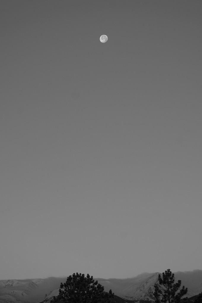 Full Moon Skied web.jpg