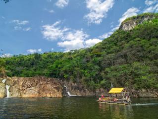 Retreat in the Rainforest