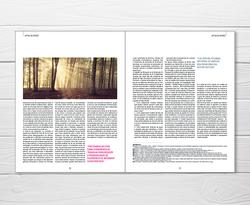 Design Editorial e paginação APDIO