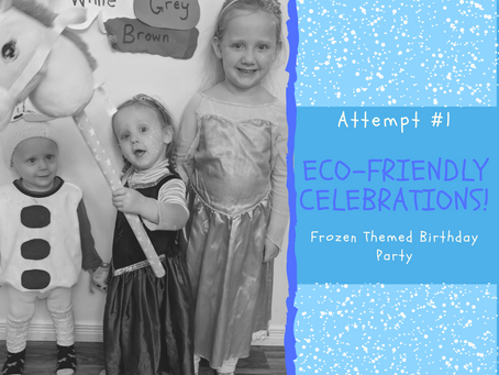 Eco- Friendly Parties - Attempt #1: Frozen Birthday Party