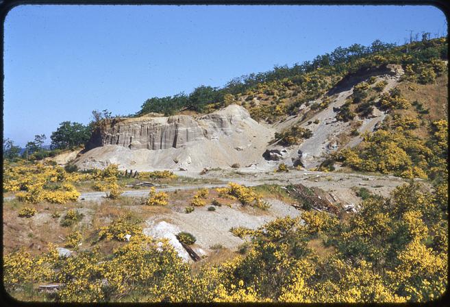 Sand Pit, Mount Tolmie