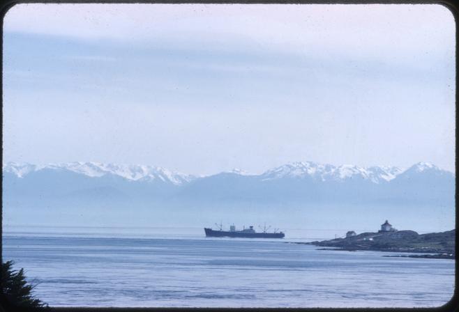 Ship passing Trial Island