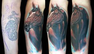 tattoo-bill-horse.jpg