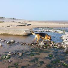 Dunster-beach.jpg