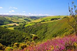 Upper East Lyn valley