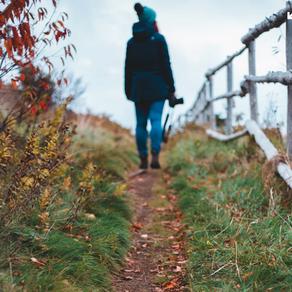 21 December - Go for a walk