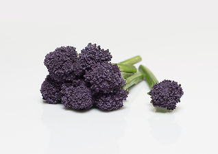 purple_sprouting_059.jpg