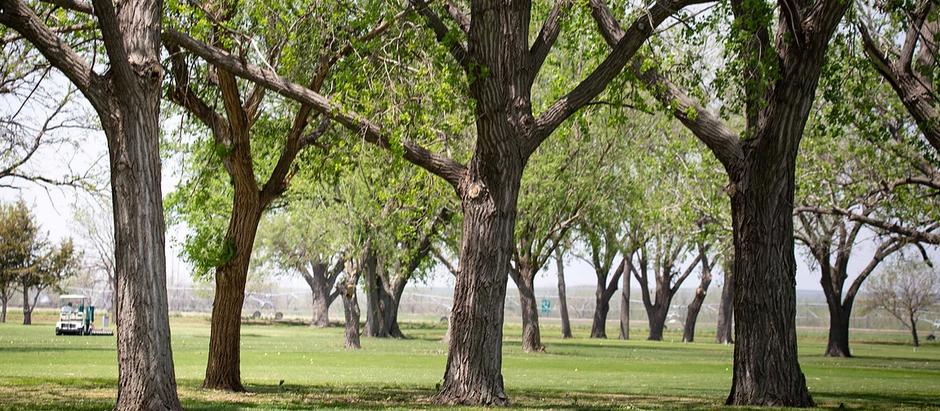 3 Ways to Golf Around Lake McConaughy