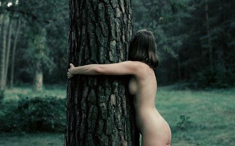 treehugger-klimaanlage-baum-foto-masha-raymers-myGiulia.jpg