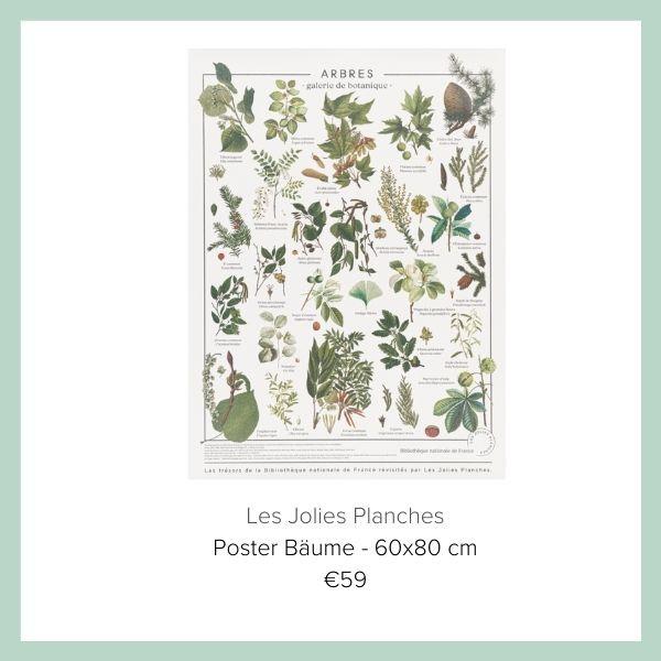 Poster mit Pflanzen  Les Jolies Planches | myGiulia