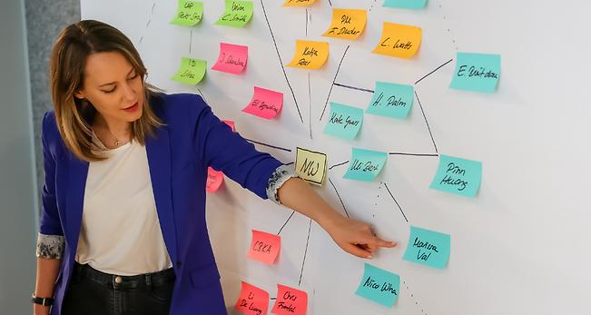 Julia-Schoenbrunn-network-mapping.png