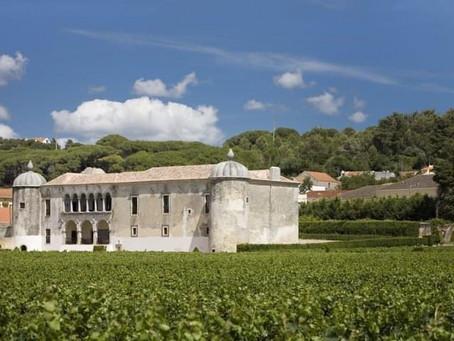 A Quinta da Bacalhôa
