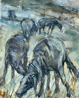 Mungrisdale Horses.jpg