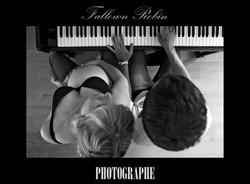 Fallown Robin photographe