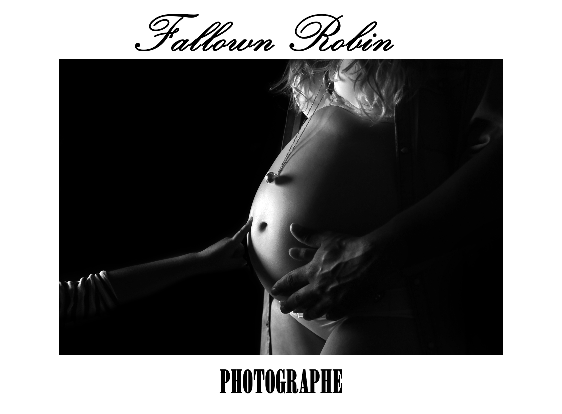 Fallown Robin photographe