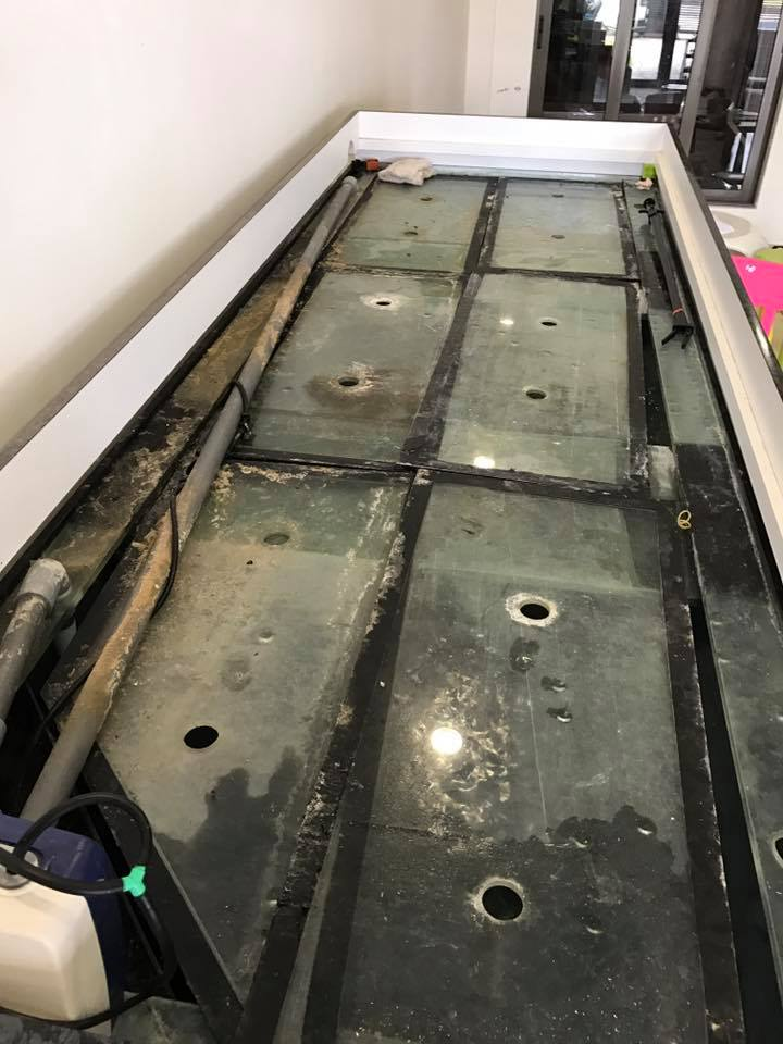 Scrubing of tank glass covers