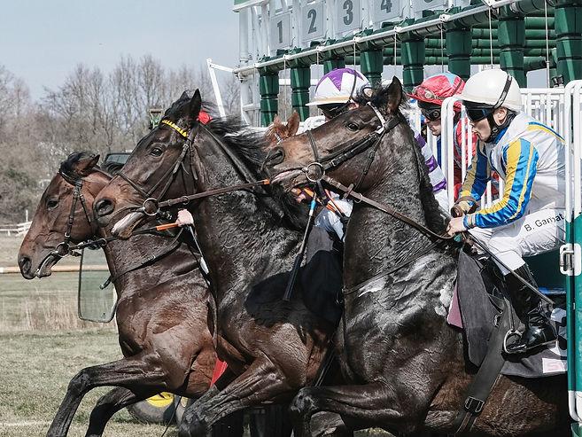 racing - stalls.jpg