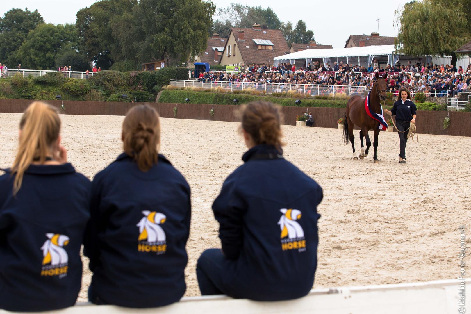 Ndy horse Day Photos Mathilde F-G'h (146