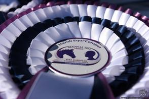 FEI Championnats d'Europe de Para-Dressage