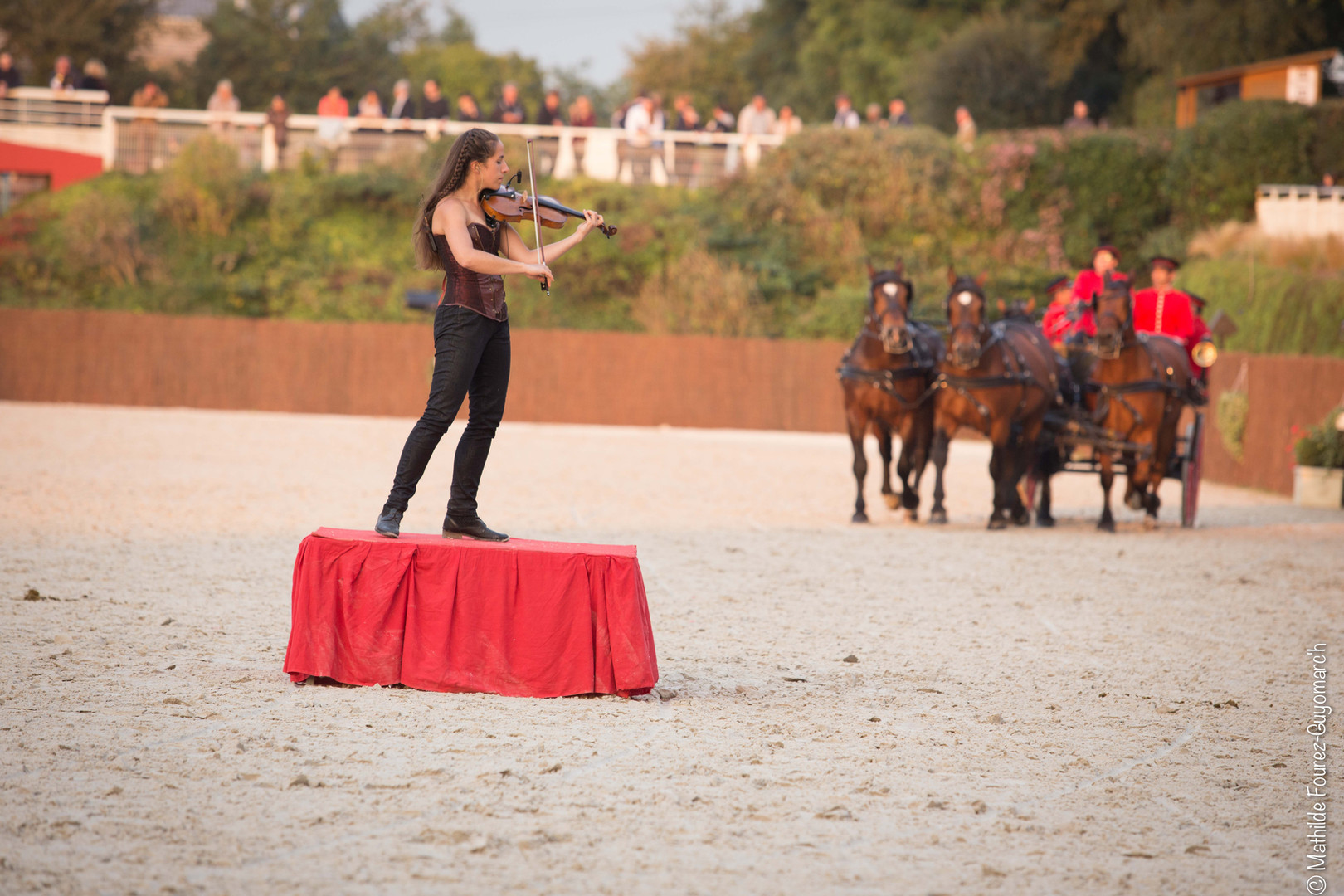 Ndy horse Day Photos Mathilde F-G'h (164
