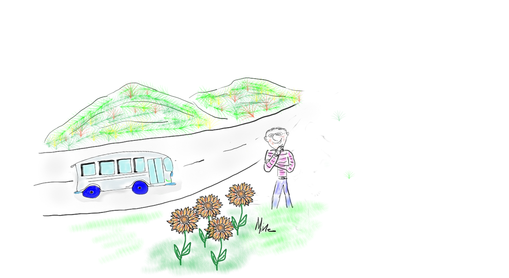 bus flowers and mountains1.png
