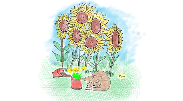 Sunflowers and cat.png