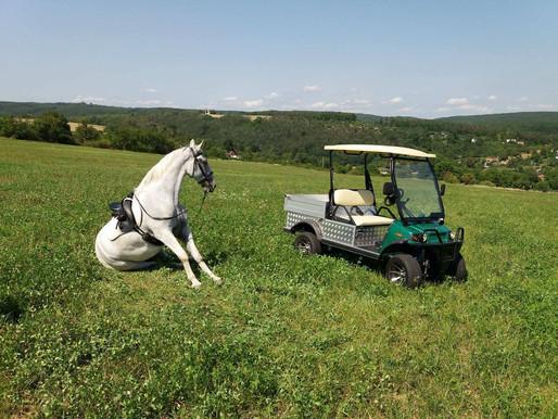 EcoCars na výstavě Jarní zemědělec 2019