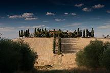 fields-336465_1920.jpg