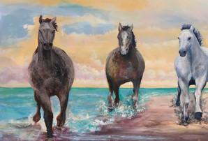 "Horse Power"""