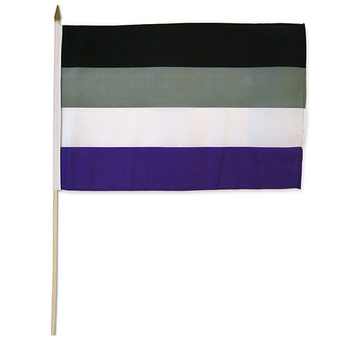 Asexual 12x18in Stick Flag