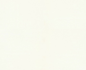 BONNEVILLE WHITE.PNG