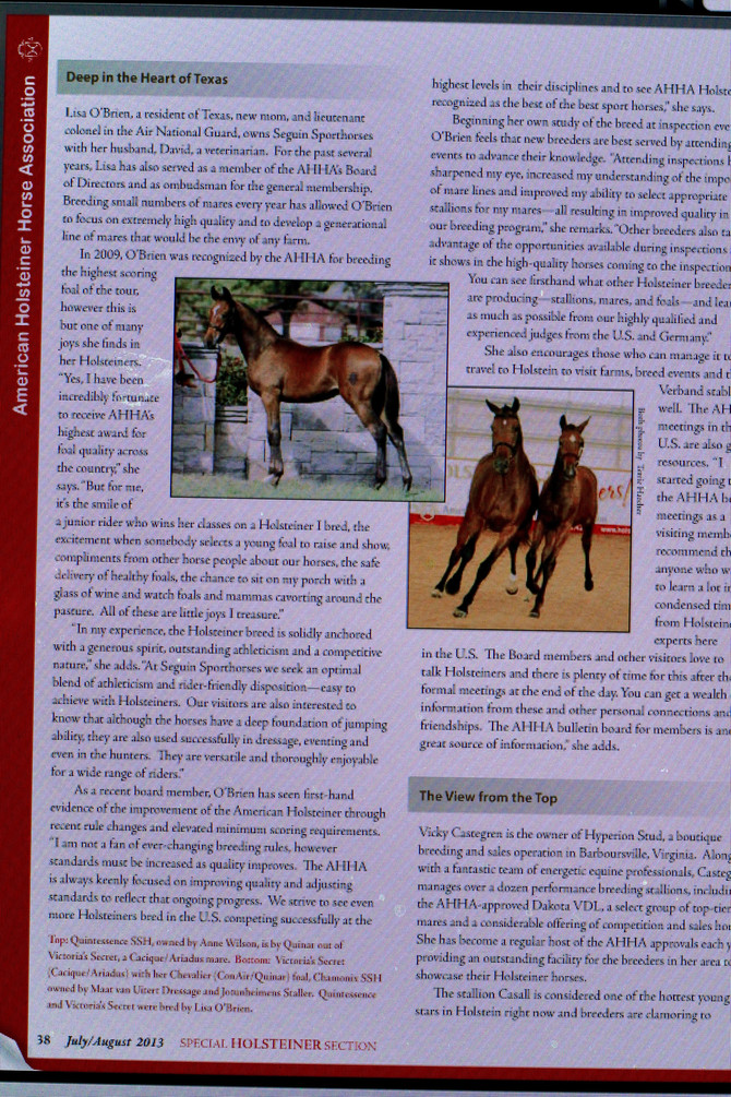 Seguin Sporthorses' Interview in Warmbloods Today! (unedited)
