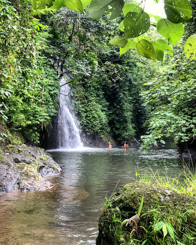 The lucious jungle and waterfalls of Bali