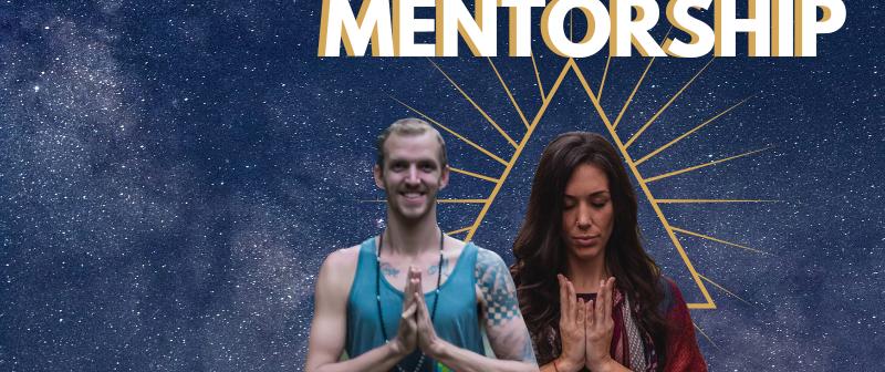 The Meditation Mentorship