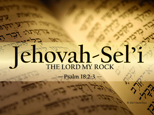 Jehovah-Sel'i