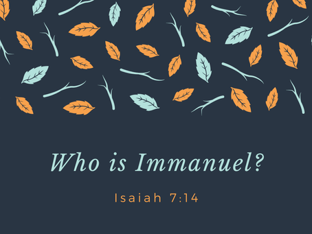 The Son, Immanuel
