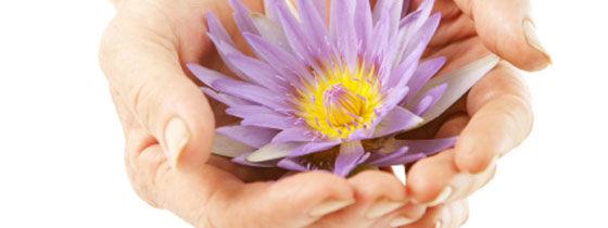 FlowerCare.jpg