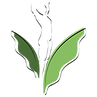Votre naturopathe Valérie Filion irrigation du côlon